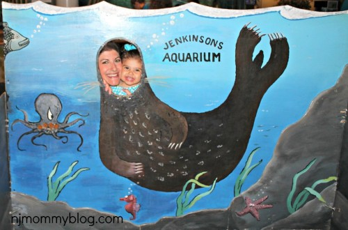 Best NJ Aquariums