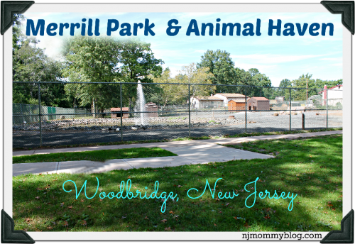 merrill park animal haven