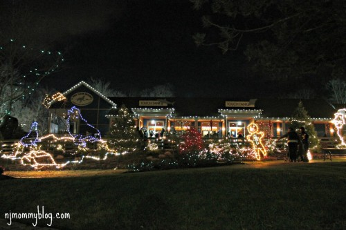 Lights at turtle back zoo 2014