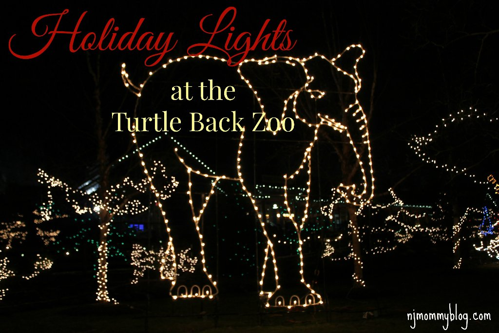 Christmas Events In Nj.Holiday Lights At The Turtle Back Zoo In West Orange Nj