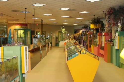 best kids museums nj