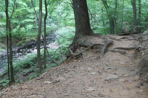 South Mountain Recreation Rahway Trail