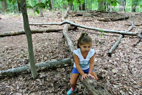 nj hiking trails for kids